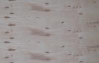 Фанера ФСФ, 2440х1220x24 мм, береза, продольная, влагостойкая, сорт 4/4